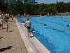 Schwimmfreunde im großen Becken II
